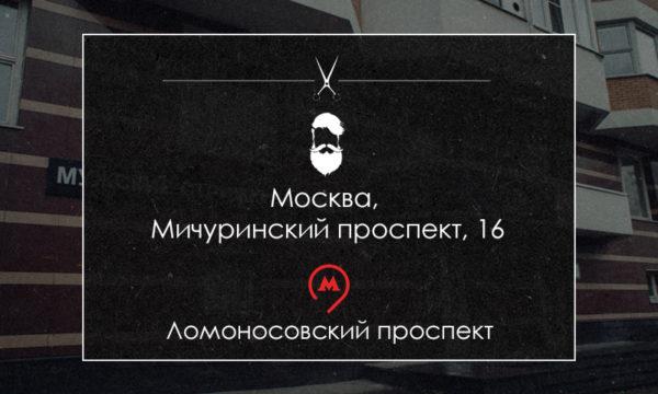 Москва, Мичуринский проспект, 16